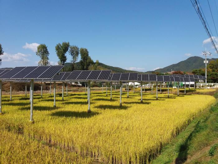 영농병행 태양광발전소