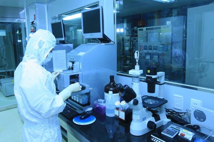 메디포스트 연구진이 줄기세포를 연구하고 있다.