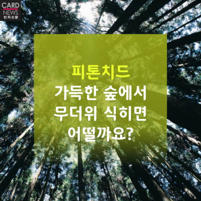 [카드뉴스]피톤치드 가득한 숲으로 무더위 식히면 어떨까요?