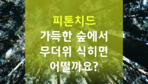 피톤치드 가득한 숲으로 무더위 식히면 어떨까요?