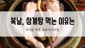 [카드뉴스]복날, 삼계탕 먹는 이유는