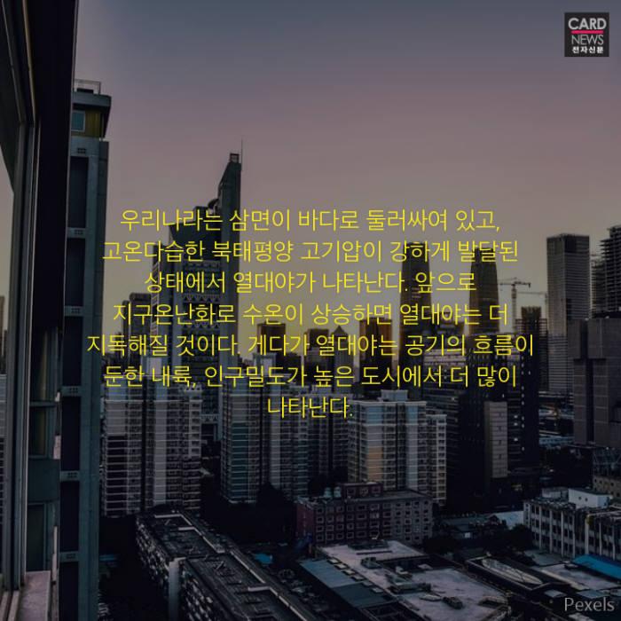 [카드뉴스]낮 더위보다 무서운 밤 더위