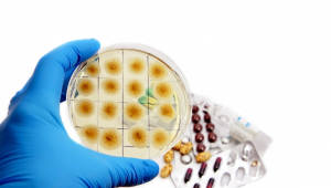 [국제]日대학병원서 항생제 안듣는 슈퍼박테리아로 8명 사망