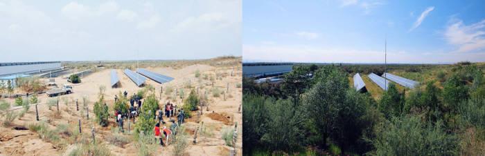 한화그룹이 중국 닝샤 지역 사막에 한화 태양의 숲을 조성하기 전(왼쪽, 2013년)과 후(오른쪽, 2017년) 모습. [자료:한화그룹]