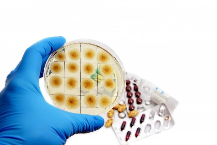 질병관리본부, 지자체와 '감염병' 대응 강화 체계 구축