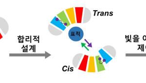 KAIST, 범용성 광스위치 단백질 기술 개발