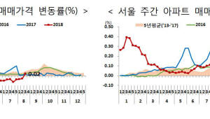 서울 동작·종로·동대문·중구 투기지역 지정, 수도권 30여곳 공공택지 추가 개발