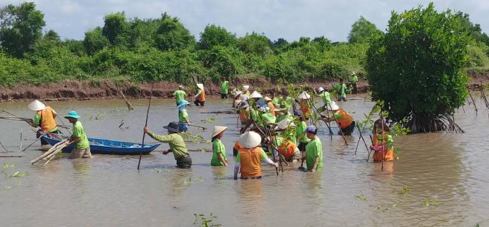 지난 6일(현지시간) SK이노베이션 노사 자원봉사단, 호치민기술대학교 학생, 베트남 현지 주민 등 총 100여명이 베트남 짜빈성 롱칸 지역에서 2차 맹그로브 숲 복원사업 자원봉사활동을 시행했다. [자료:SK이노베이션]