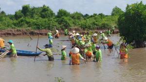 SK이노베이션, 맹그로브 숲 복원 2차 자원봉사 활동