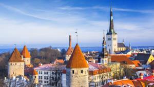 [36주년 창간기획Ⅱ]<10>에스토니아가 이룩한 전자정부 혁신