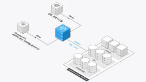 네이버 클라우드 플랫폼, 클라우드 전용 회선 서비스 출시