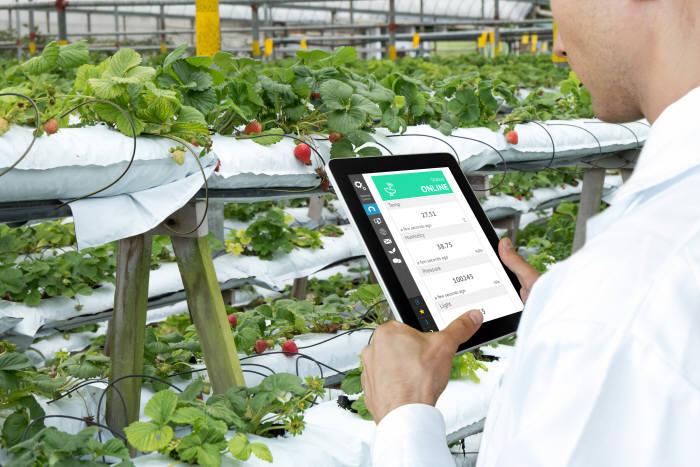 정보통신기술과 나노기술의 발전으로 이미 스마트팜은 새로운 농업 방식으로 빠르게 도입되고 있다. (출처 : shutterstock)