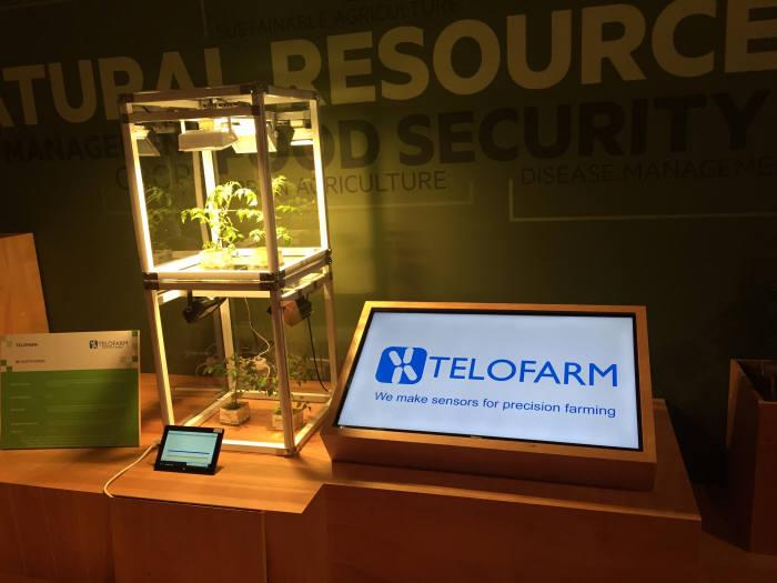 이정휸 교수가 운영하는 스마트팜기업 텔로팜의 기술 장비. 마이크로탐침센서가 토마토 줄기에서 양액 흐름속도를 측정한다. (출처: 서울대학교 공과대학)