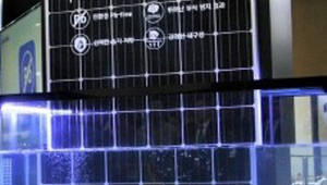 원전 4기 규모 수상태양광 시장 두고 대기업 기술력 격돌