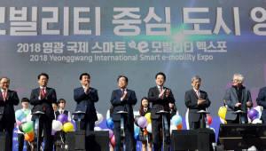 영광 국제 스마트 e-모빌리티 엑스포 개막식…e-모빌리티 중심 도시 선포