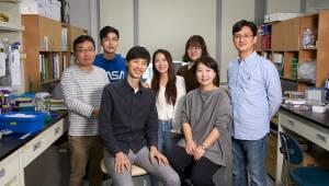 박지영 UNIST 교수팀, 만성 간질환 진단·치료 물질 찾아내