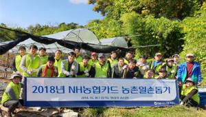 NH농협카드, 경기도 화성 포도농장 일손 돕기