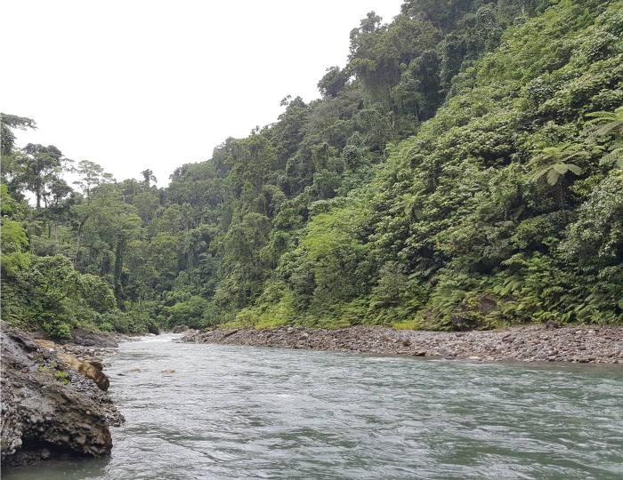 한국수자원공사가 수주한 솔로몬제도 수력발전사업 예정지 티나강 유역. [자료:한국수자원공사]
