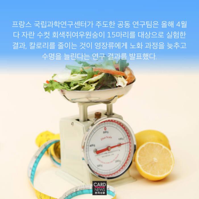 [카드뉴스]적게 먹어야 오래 산다?