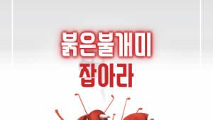 붉은불개미 잡아라