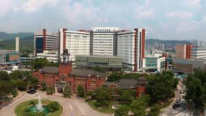 '빅3' 병원 망분리 '보안 높이고 의료 빅데이터 활용'