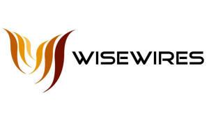 [2018 일하기 좋은 SW전문기업]일과 삶의 균형 부문 최우수상-와이즈와이어즈