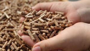 버려진 목재로 전기 생산한다...산림청, 2022년까지 펠릿 70만톤 공급