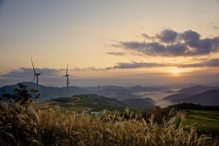 후쿠시마 원전사고 日 도쿄전력...태평양에 초대형 풍력발전소 건립 추진