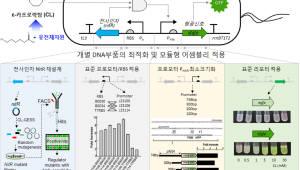 생명연, 유전자회로로 나일론 원료 합성 효소 발견