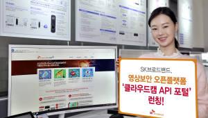 """SK브로드밴드 '클라우드캠 API 포털' 론칭···""""영상정보를 서비스로 구현"""""""