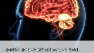 [국제]여성의 뇌는 남성보다 젊어 보인다?