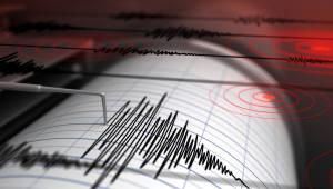 경북 포항 북구 동북동쪽 50㎞해역서 규모 4.1 지진 발생...인명피해 없어