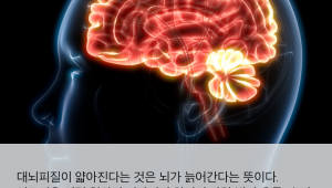 [국제]우울증, 뇌 노화 앞당길 수 있다