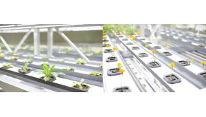 우리이티아이, '우리바이오'로 사명 변경…식물공장 사업 진출