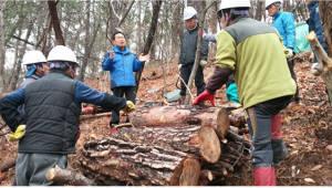 산림청, 퇴직공무원 활용 '산림병해충 방제컨설팅' 확대
