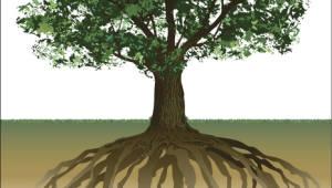 스마트제조 공정, 글로벌 수요 대응 ··· 차세대 뿌리기업 키운다