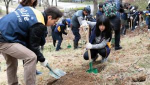 현대해상, 친환경 봉사활동 '희망 한 그루' 시행