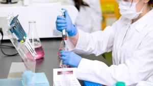국내 제약사, 면역 항암제 필두로 미국암학회 집결