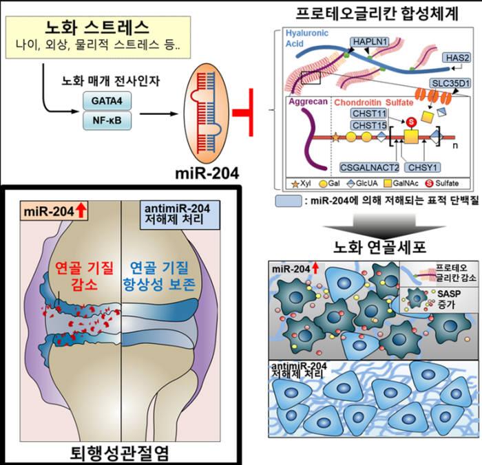 자료:서울대학교