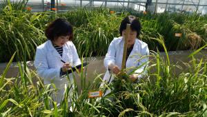 경상남도, 농업기술 '전자 연구노트 관리시스템' 구축