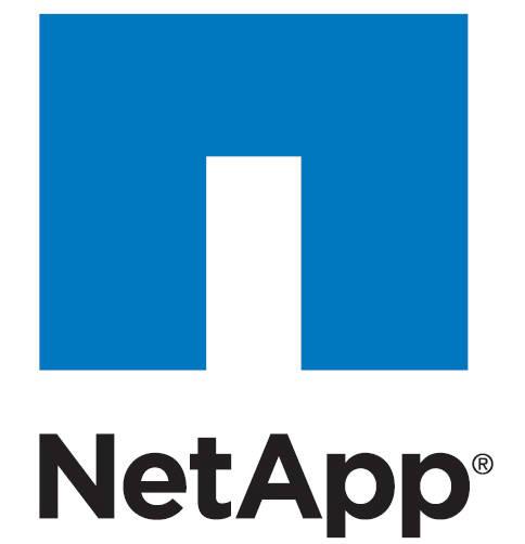 넷앱, '메모리 엑셀러레이티드 데이터 1.3'출시...인텔 옵테인 DC 퍼시스터트 메모리 지원