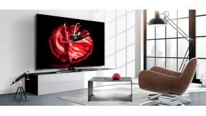 美 비지오도 내년부터 OLED TV 진영 합류…QLED는 지속 위축