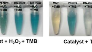 KAIST, 그래핀 기반 효소 모방 물질 개발...알츠하이머 조기진단 활용