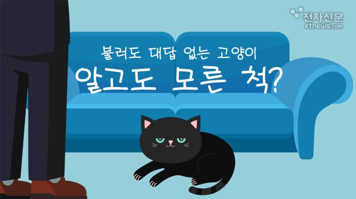 [모션그래픽]불러도 대답 없는 고양이, 알고도 모른 척?