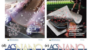 국제 학술지 ACS나노, KAIST 소개 사설 게재