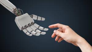 車보험 손해사정 업무 '정확·신속'…보험산업에 활용되는 AI