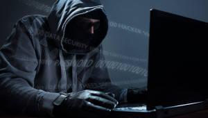 정보통신社 사이버보험 의무화 한 달 앞으로…보험시장은 여전히 안갯속