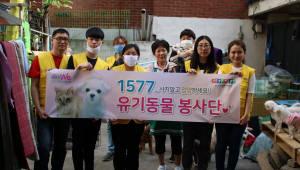 코리아드라이브, 유기동물 봉사활동 전개 '사지말고 입양하세요!'