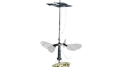 [IT핫테크]날아다니는 '259㎎ 로봇' 개발됐다