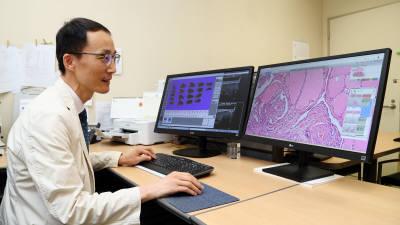 필립스코리아-서울성모병원, 암 진단 효율성·질적 향상 위해 협력